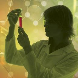 Pengalaman bekerja di Clinical Research, ngapainaja?