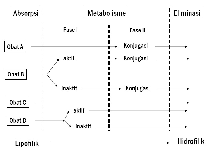 skema singkat metabolisme obat