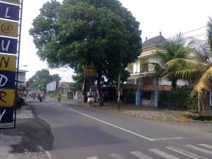 Foto0254