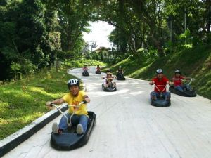luge-with-skyride-2