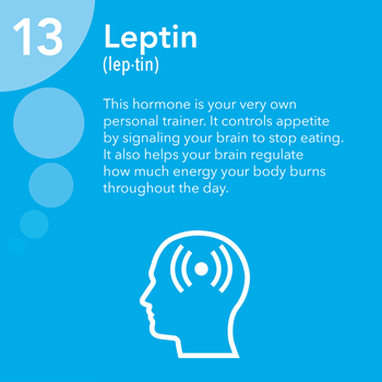 Mengenal hormon leptin